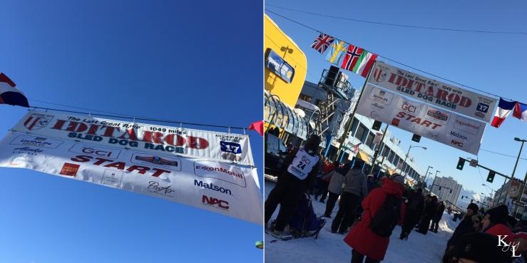 Iditarod 45-6